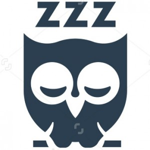 We host, you Zzz
